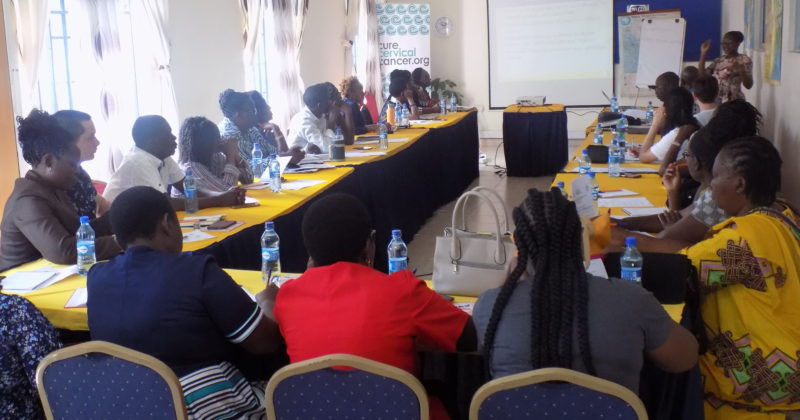 Stakeholders Meeting on Palliative Care and Treatment of Cervical Cancer