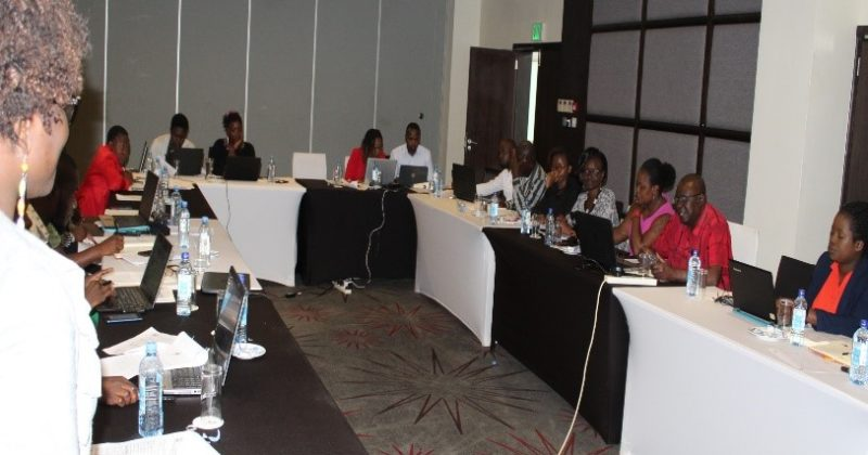 Sensitization meeting on RMNCAH and immunization budgeting in Kisumu County