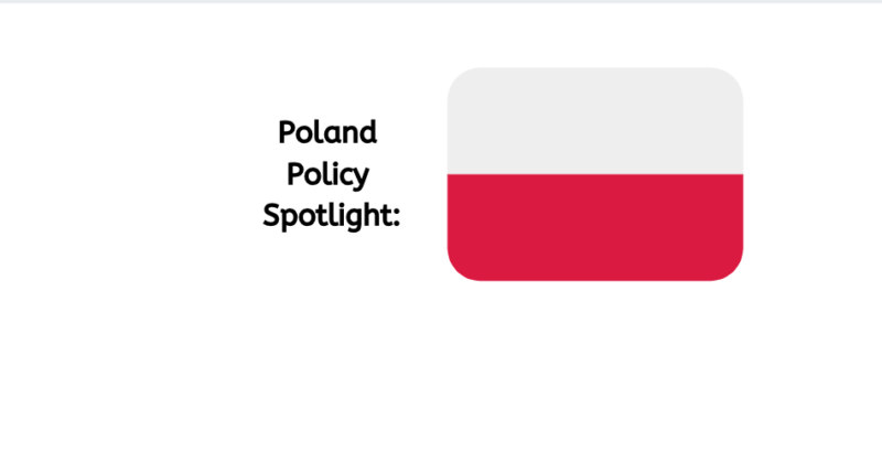 Poland's New Abortion Laws